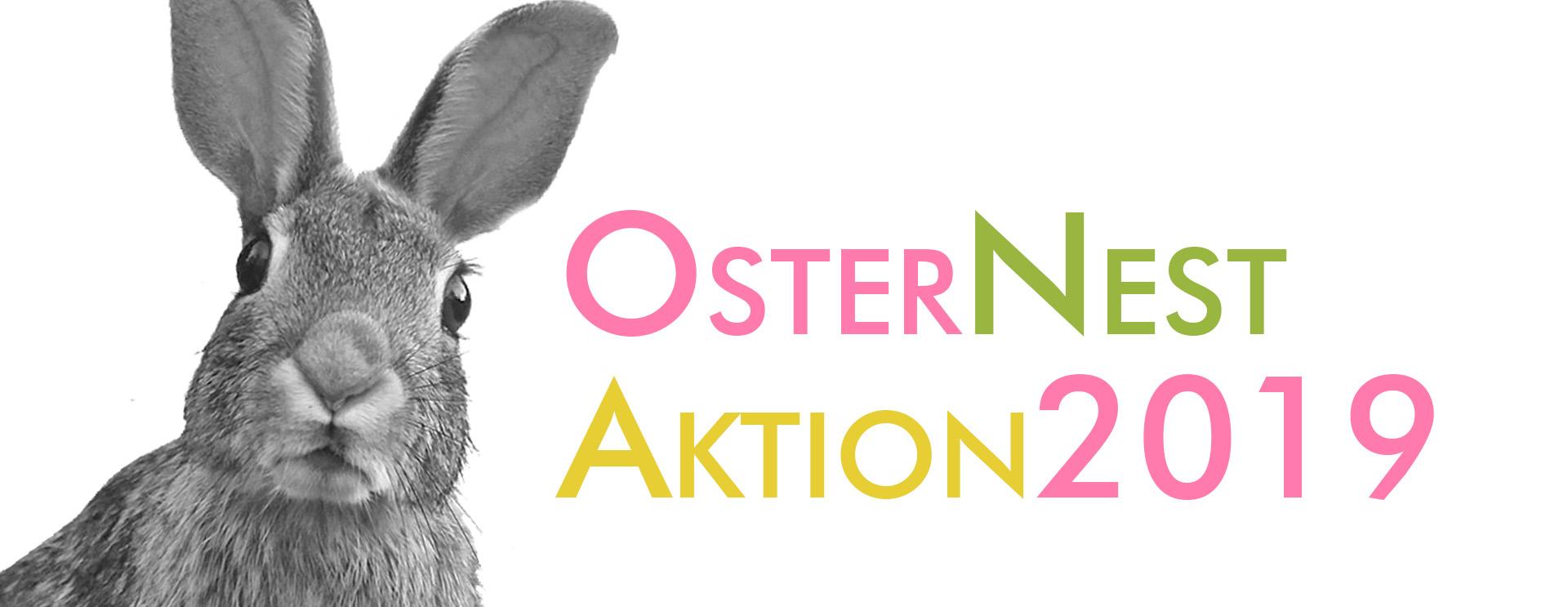 Osternest-Aktion-shop